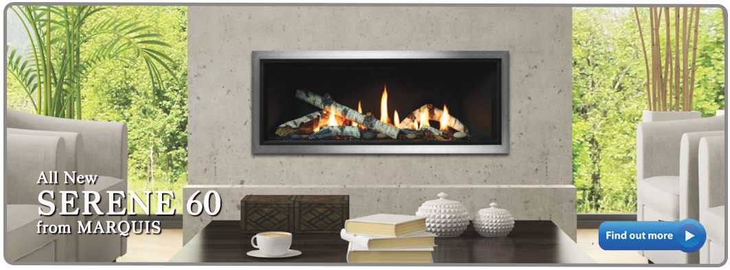 2020 Serene 60 birch linear gas fireplace marquis