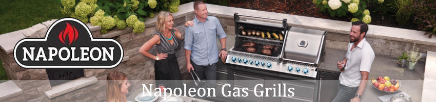 2018 napoleon grill banner